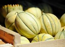 Le marché du dimanche matin - Salon-de-Provence