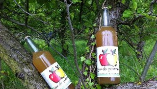 Daniel EGEA - Vente directe de jus de pommes et légumes Bio - Salon-de-Provence