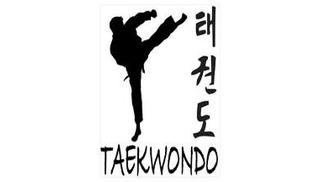 Provence sport Taekwondo - Salon-de-Provence