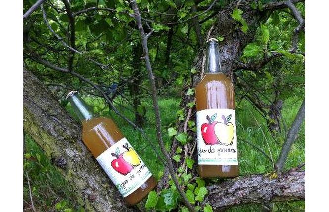 Daniel EGEA - Vente directe de jus de pommes et légumes Bio 1 - Salon-de-Provence