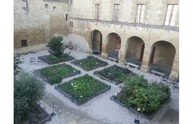 Jardin des simples 1 - Salon-de-Provence