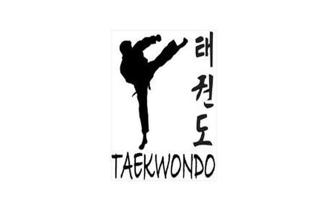 Provence sport Taekwondo 1 - Salon-de-Provence